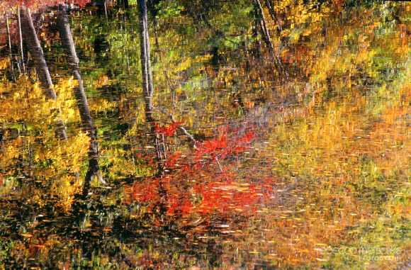 Autumn reflections Lamprey River Durham New Hampshire